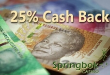 Make Springbok Casino Your Regular Gaming Destination Thanks to its 25% Cashback